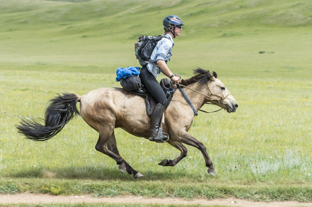 endurance rider  Tips and Hints for Endurance Riding
