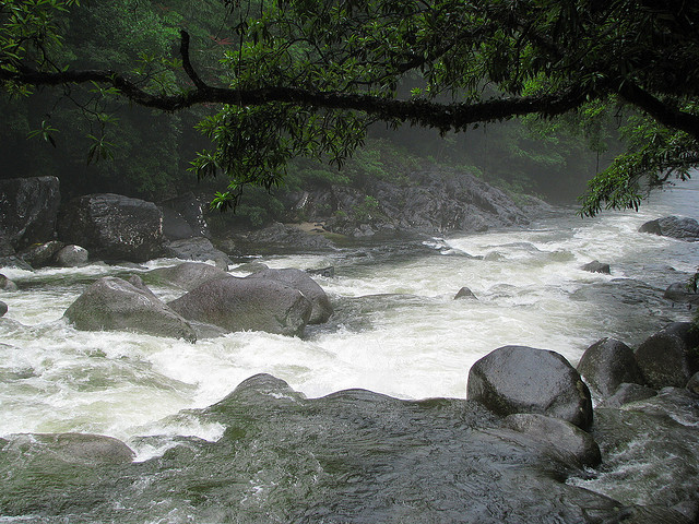 Mossman River (photo by  tanetahi)