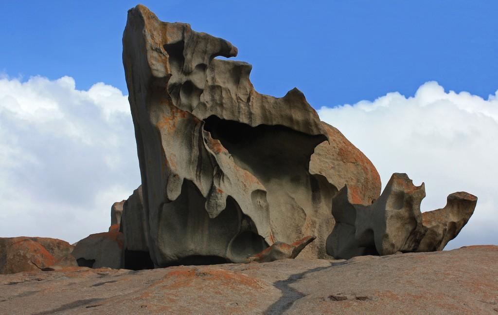Kangaroo Island (photo by Robert Hoge)