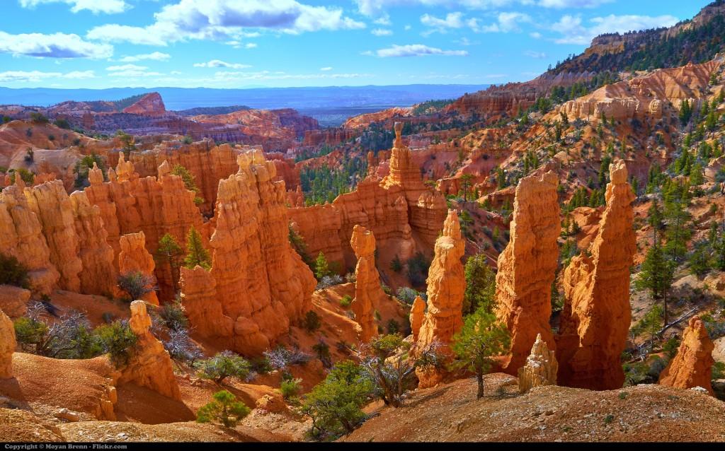 Bryce Canyon (photo by Moyan Brenn)