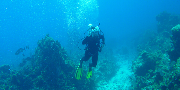 Scuba Diving in Cayman Islands (Photo by TheSquirrelfish)