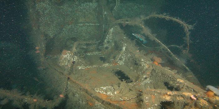 German U-869 Wreck (Image Credit: U869)