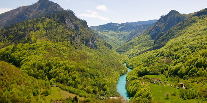 tara-river-09042015