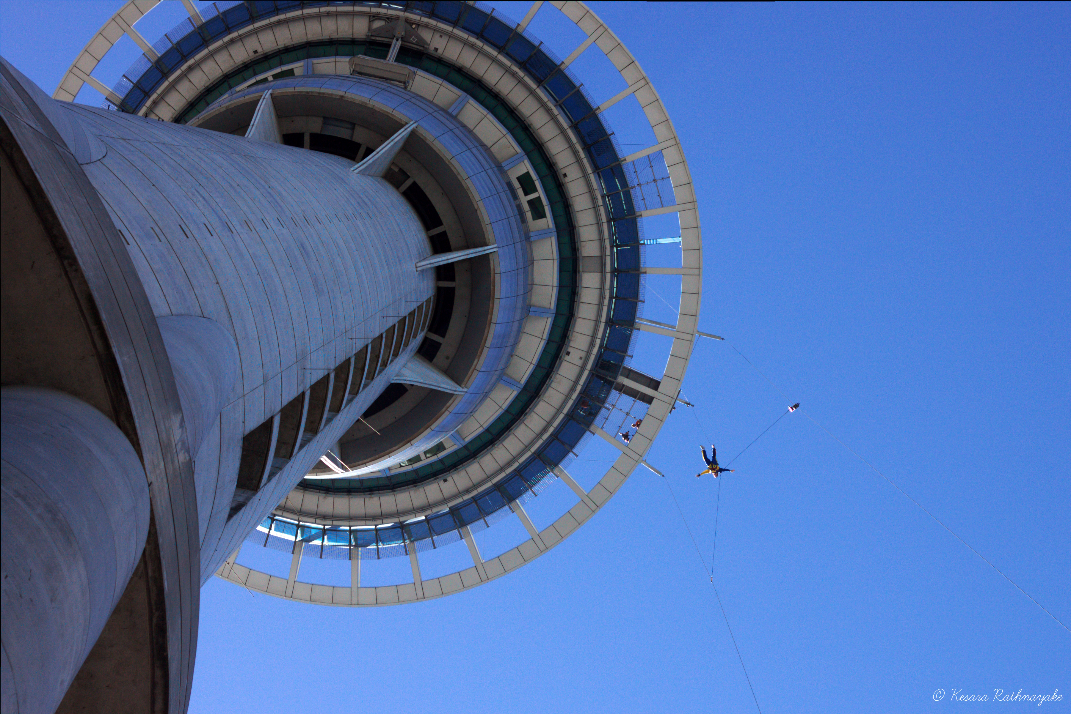 terrifying spots to bungee jump off a building adventure herald