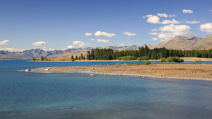camping spots in new zealand