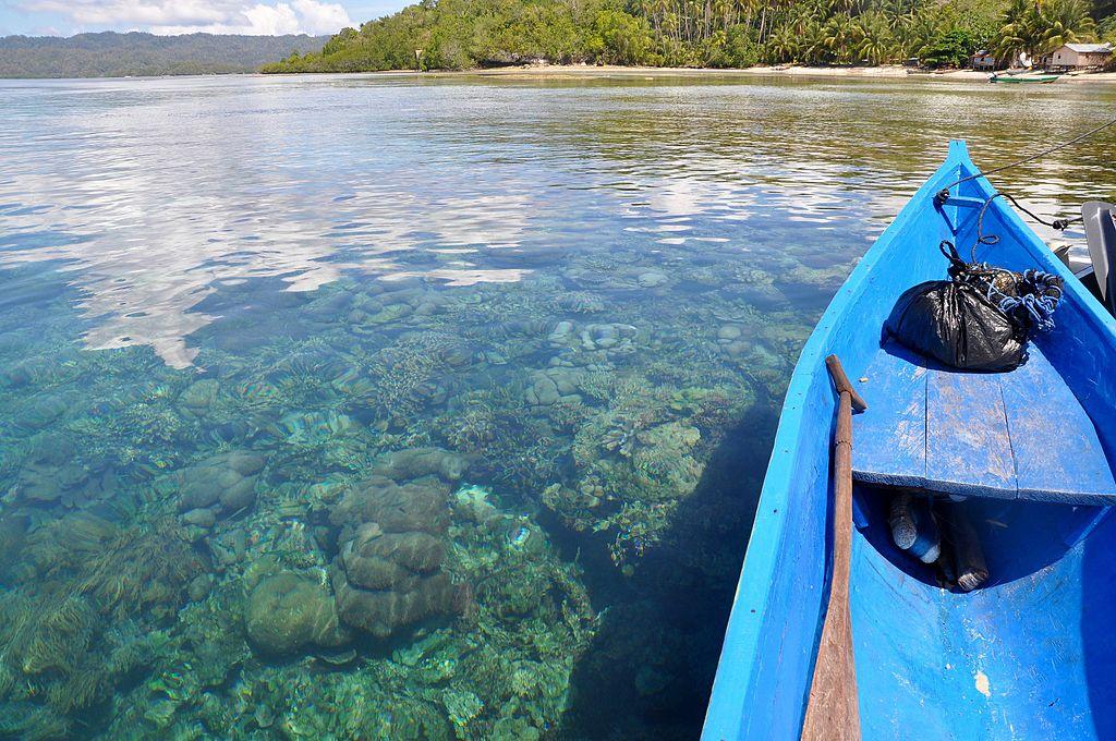 Boat_and_corals_near_Pulau_Gam,_Raja_Ampat