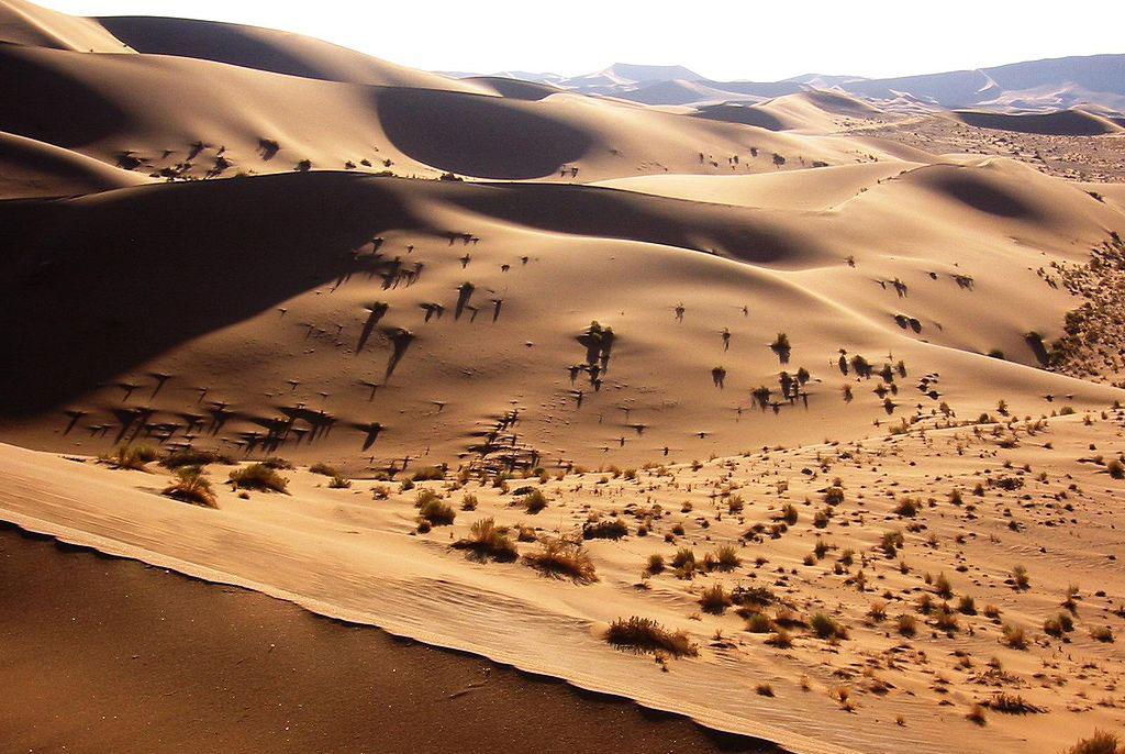 1024px-Namib_Desert_Namibia(1)
